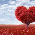 真実の愛とは?愛し方と愛され方を考えよう!愛の質ってなに?