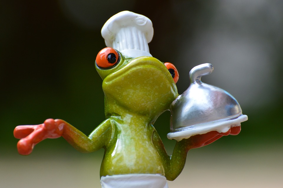frog-927768_960_720